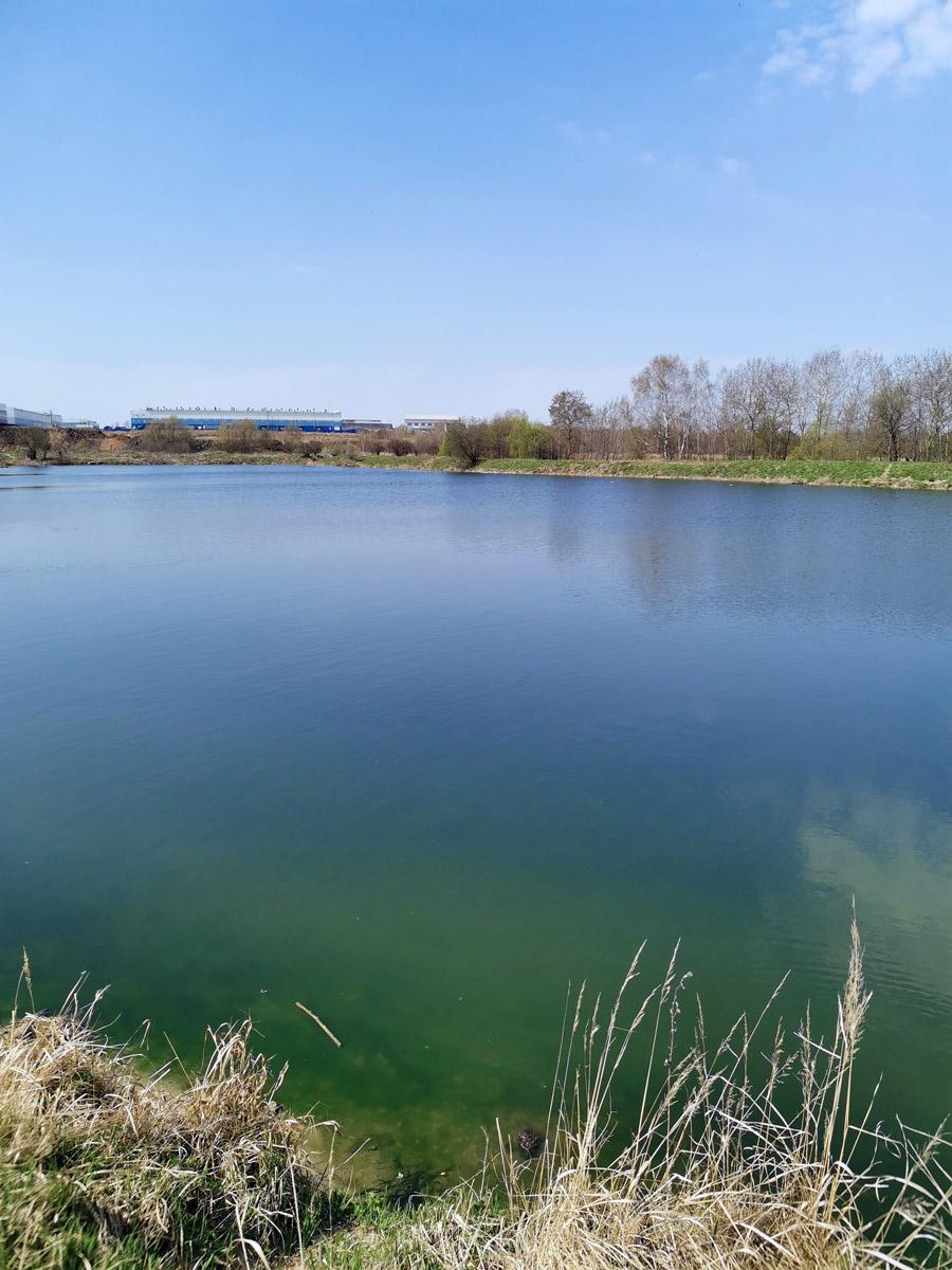 А это другой пруд рядом. Всего там четыре пруда поблизости друг от друга. У кучи мусора кругом....