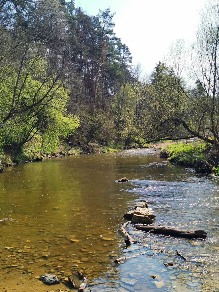 Река Рожайка