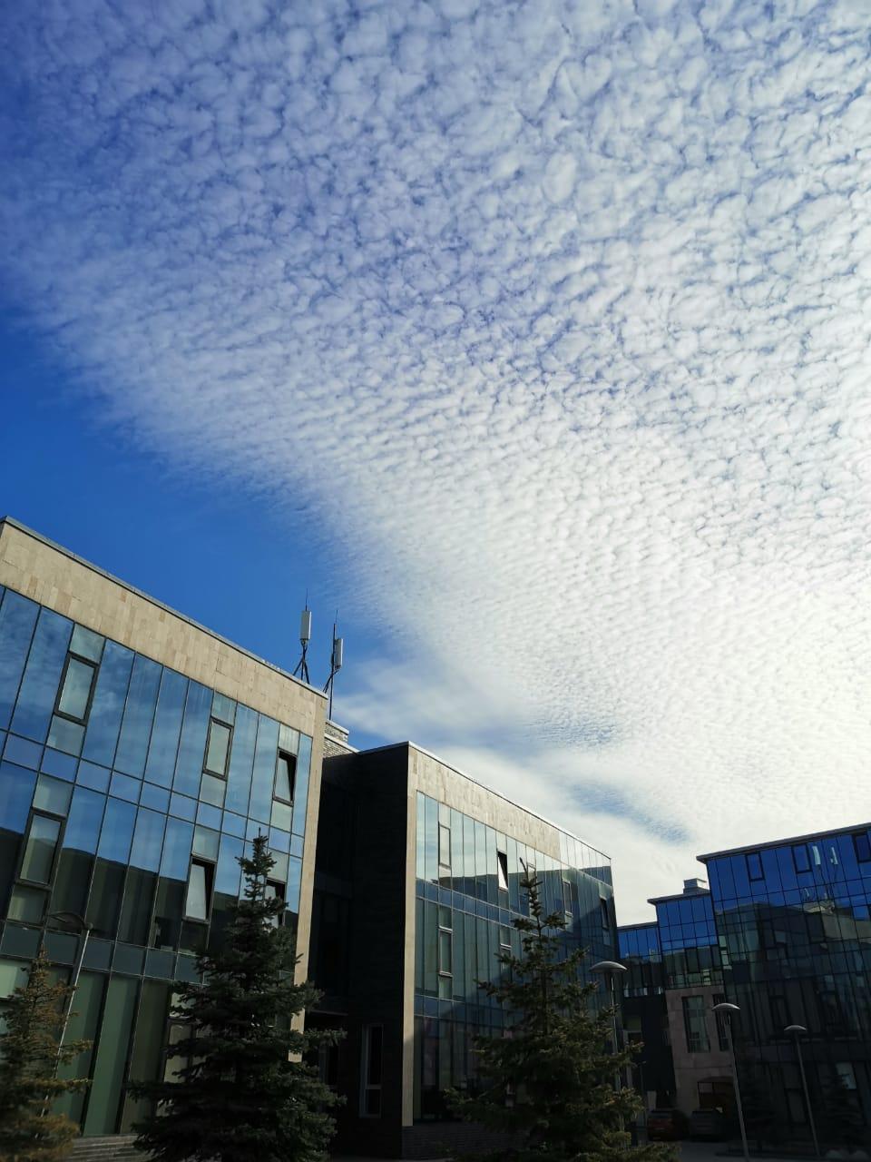 Красивое небо над бизнес центром, где я проработал пять лет. До переезда нашей компании из этого уютного места в другой БЦ оставалось меньше двух месяцев...