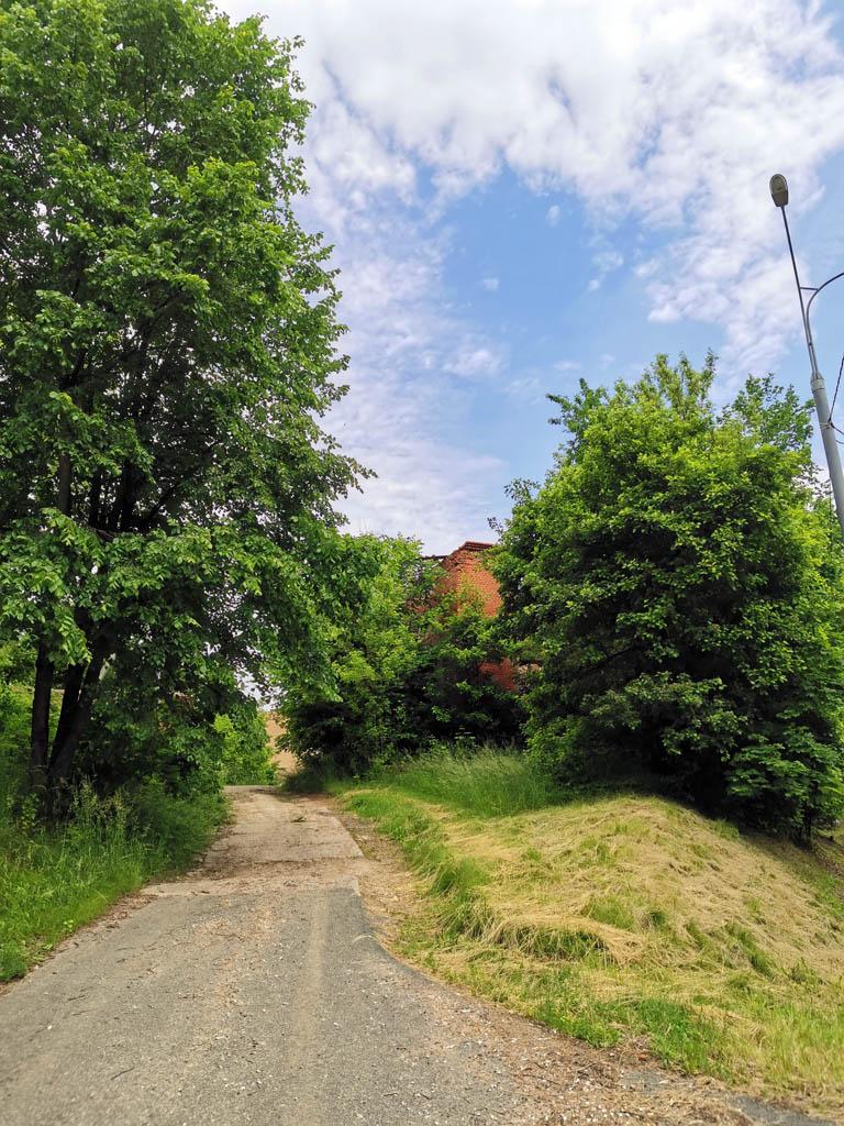 Руины хозяйственной постройки (амбара) усадьбы прячутся за деревьми.