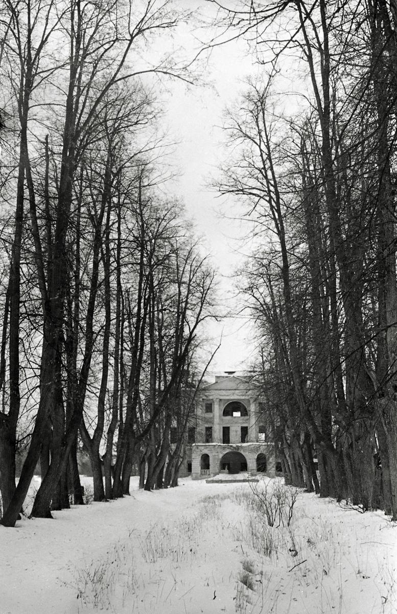 Фотография 1975г. Вид на аллею и главный дом усадьбы.