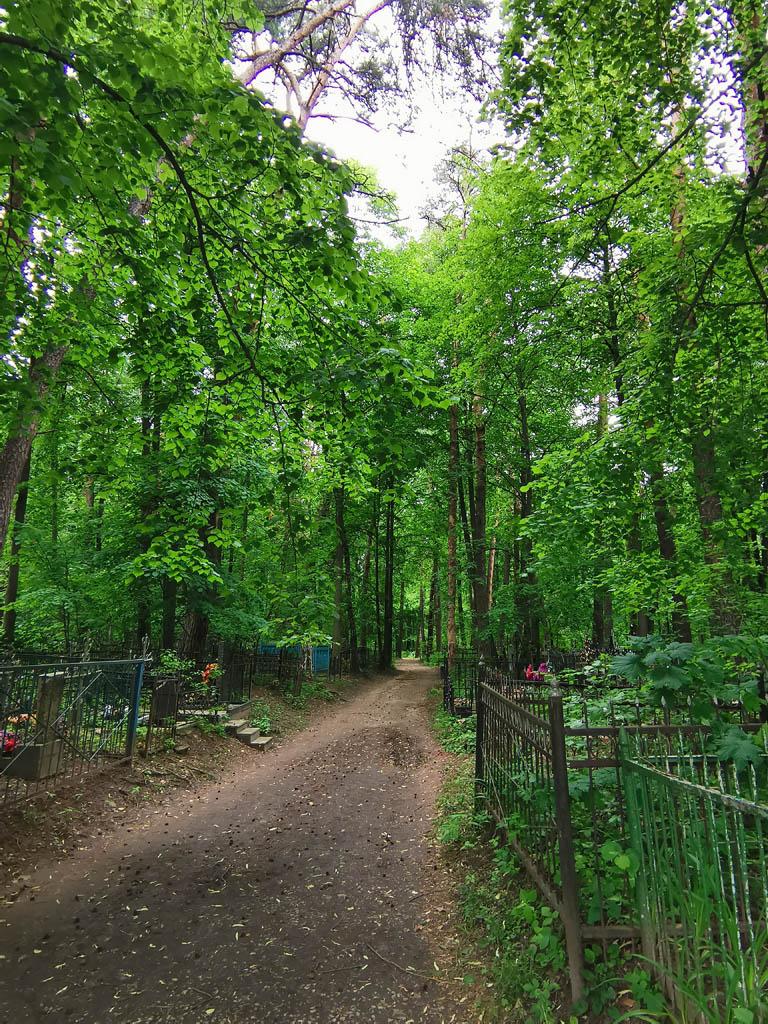 Входная аллея Занарского кладбища.