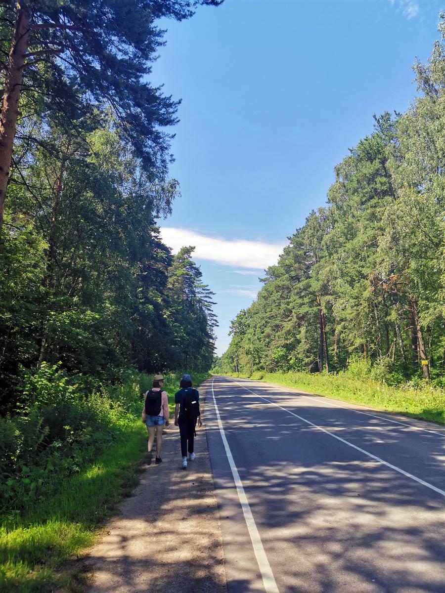 Но наша цель была не Битягово. а расположенный рядом в лесу Серафимо-Знаменский скит.