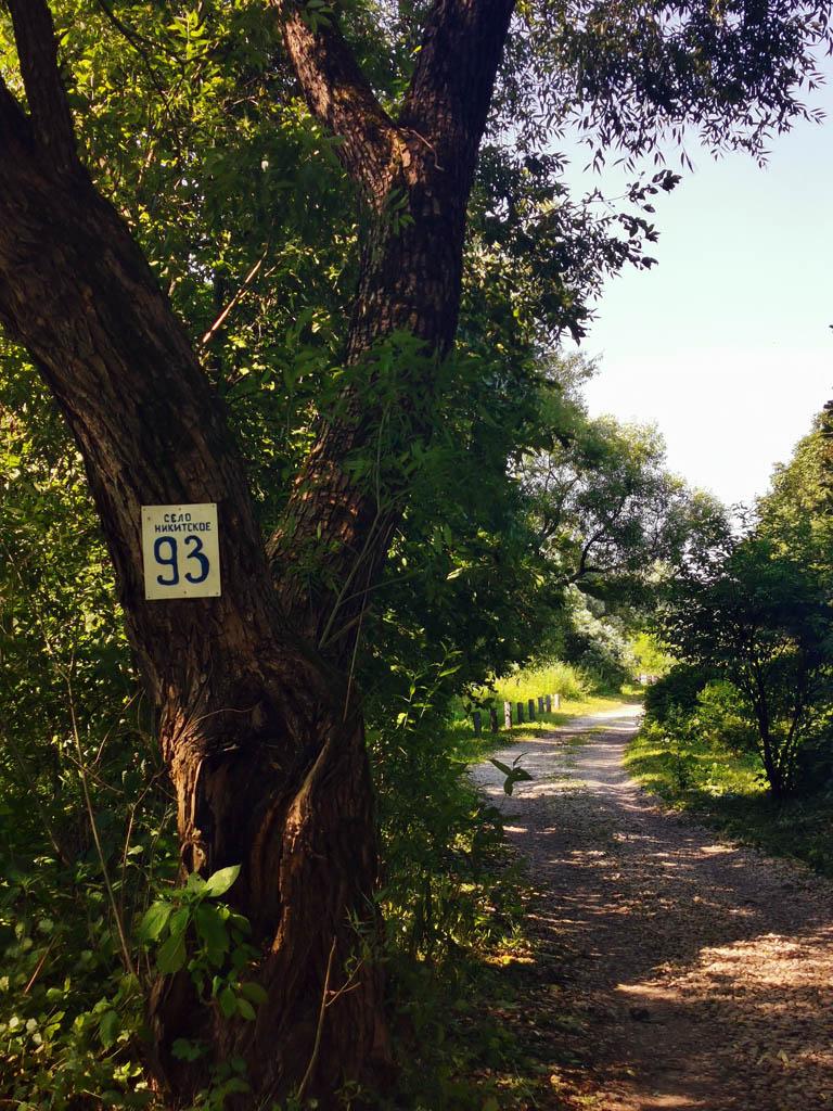 Табличка с номером дерева, то есть дома...