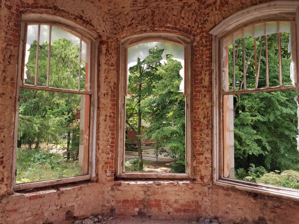 Вид из окон этой башенки на здание Ленинградского Научно-Исследовательского Института Сельского Хозяйства. До его постройки, институт располагался в доме Елисеевых.