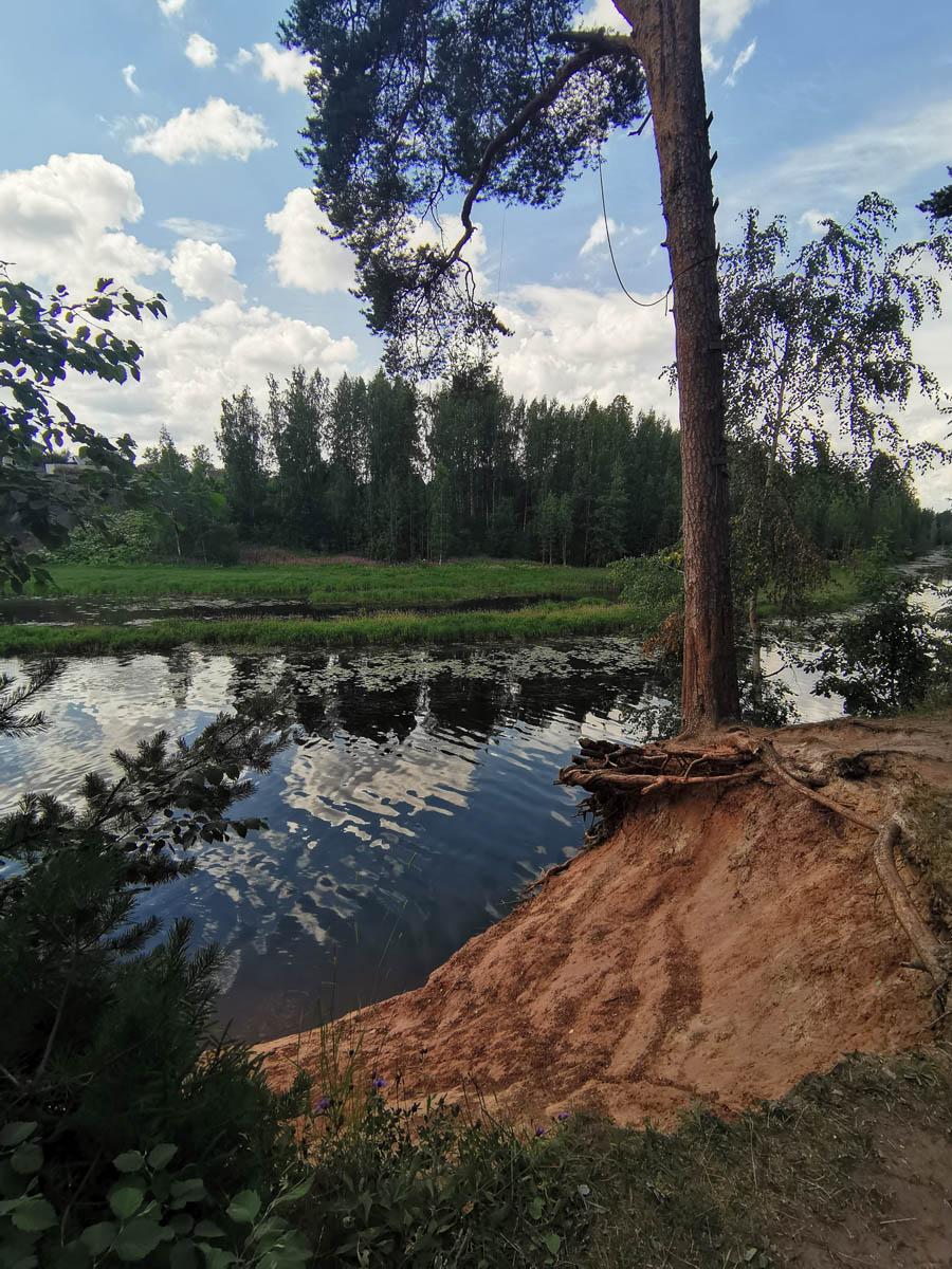 20 июля 2020. Ленинградская область, река Оредеж, Белогорское водохранилище.