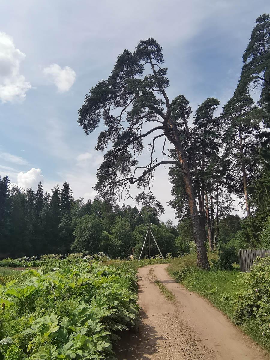 Идем по левому берегу к Белогорской плотине