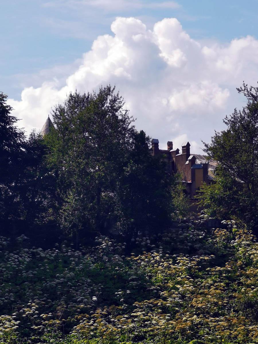 На правом берегу за зарослями борщевика и деревьями виднеются печные трубы Усадьбы Елисеевых...