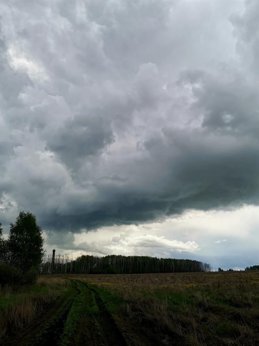 Облака все темнее... И очень быстро грянул ливень... Прогноз не обманул...