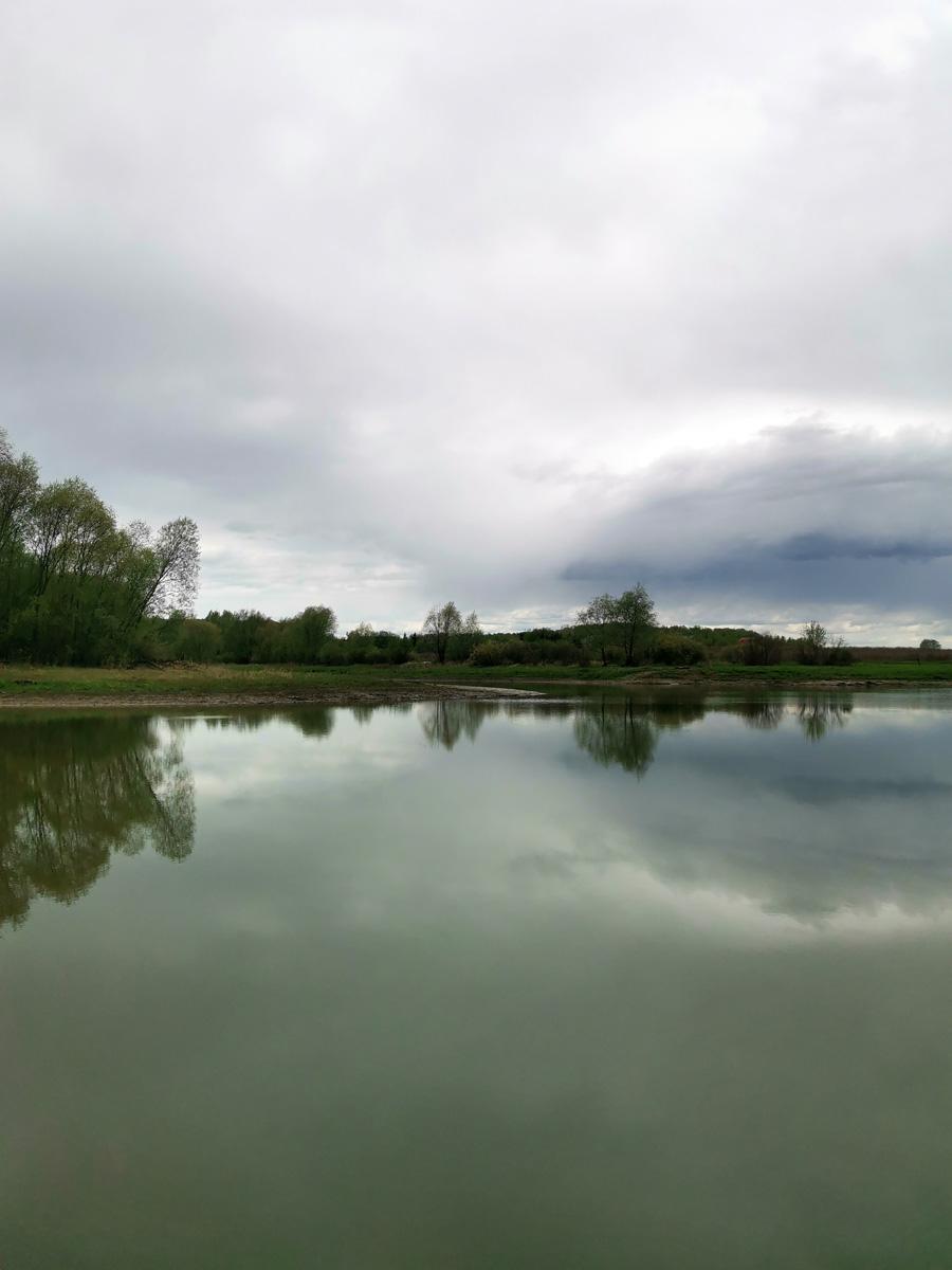 Спокойная гладь воды отражает молодую листву деревьев и унылое небо...
