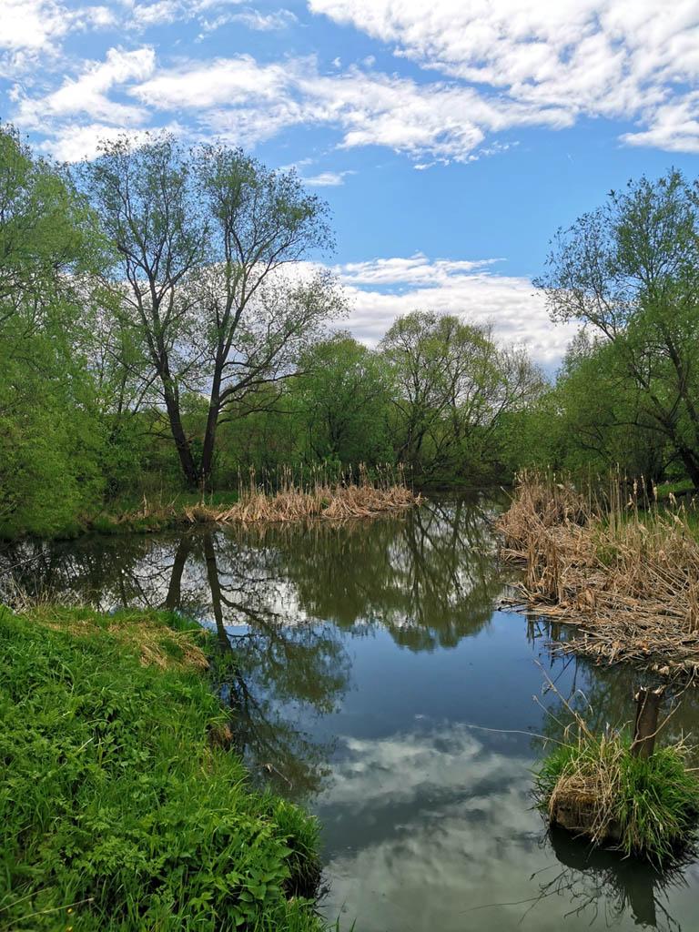 Перейдя строящийся ЦКАД дошли до деревень с названием Вилларибо и Виллабаджо, то есть, Базулино и Мотякино. Между этих деревень протекает река Гнилуша.