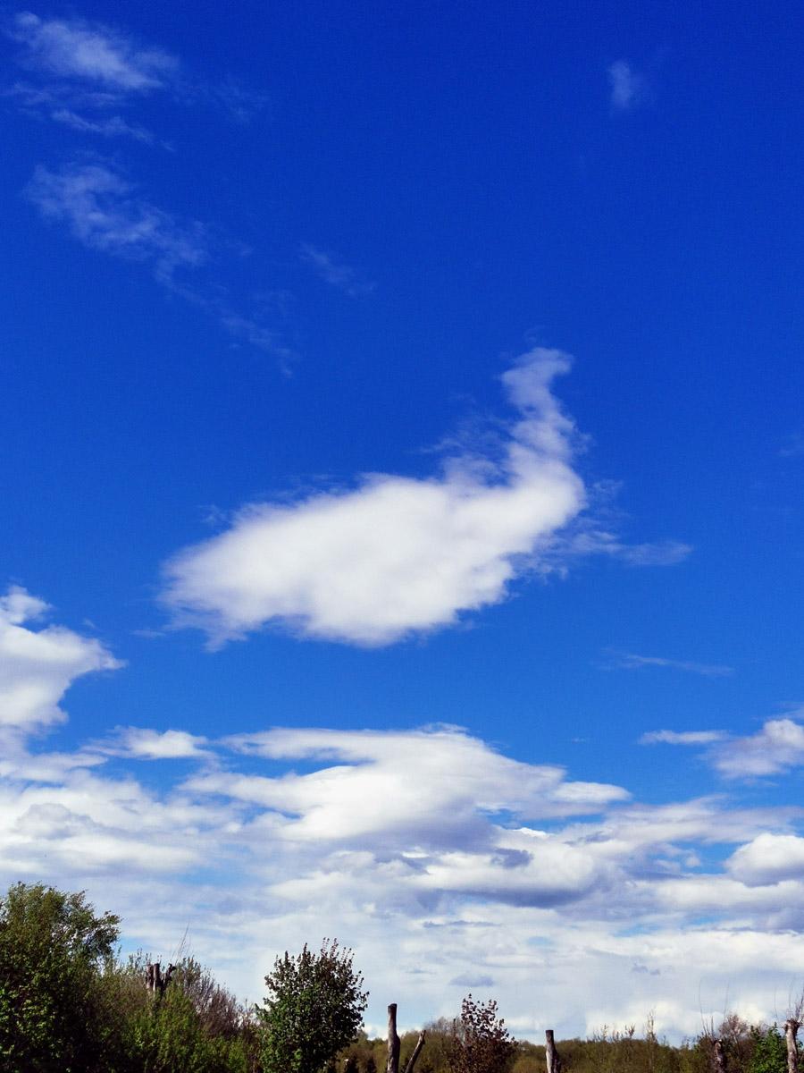 Чем ближе к дому, тем яснее небо. Настроение тоже отличное. До новых встреч!