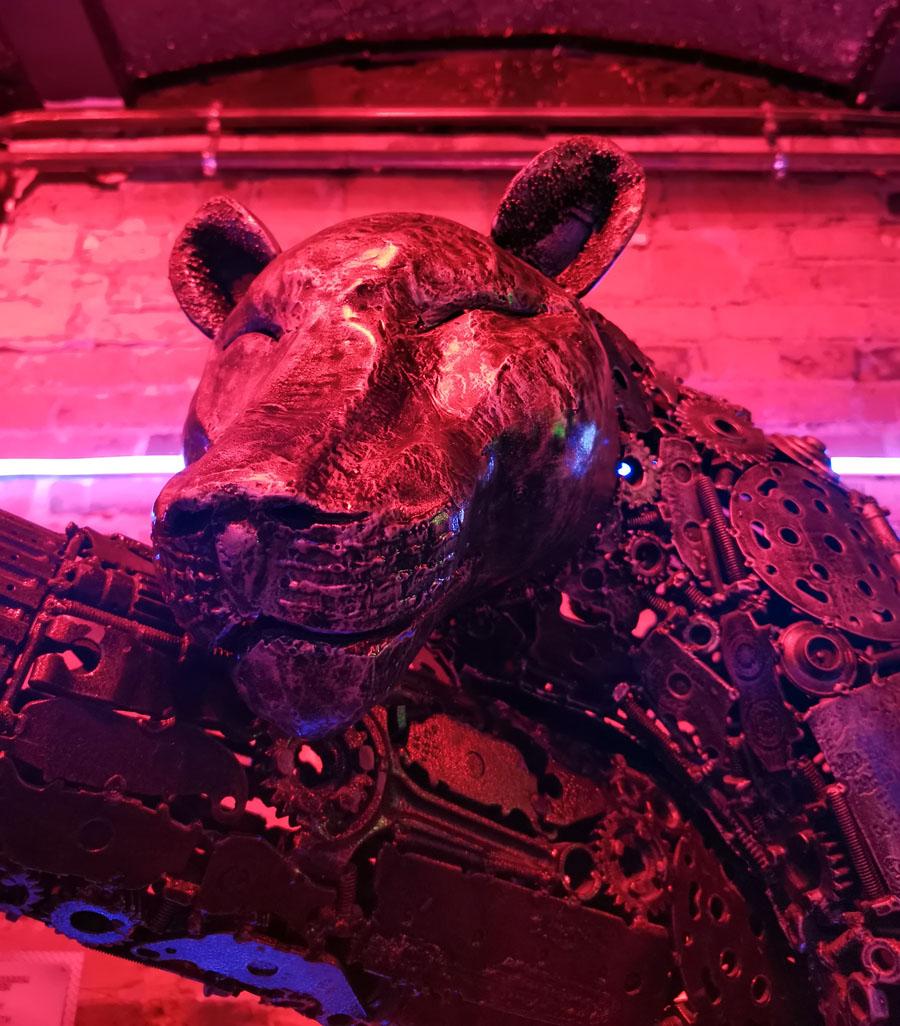 Часть экспозиции посвящена животному миру..