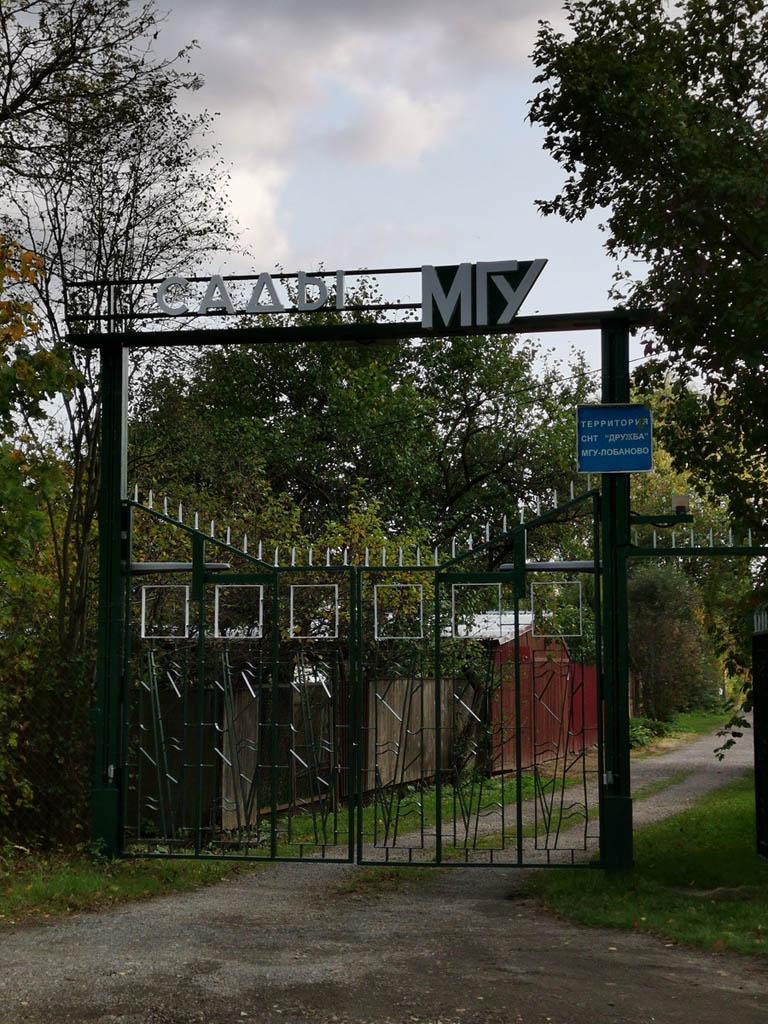 Ворота на дачный поселок преподавателей МГУ...
