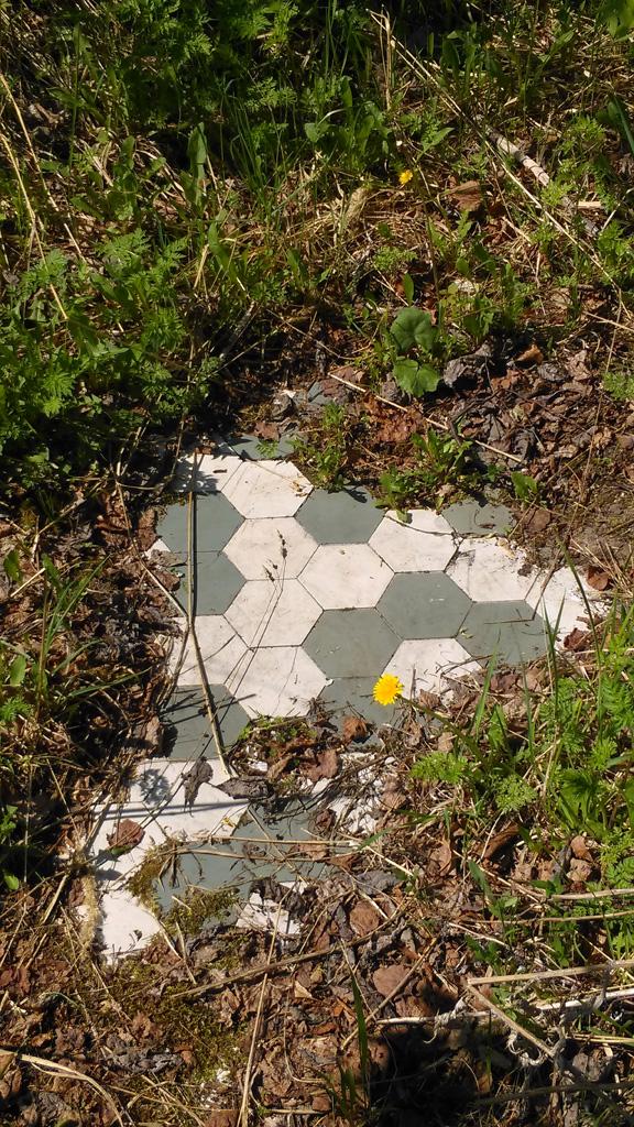 ..... под травой и обломками кирпичей проглядывает пол из плитки.