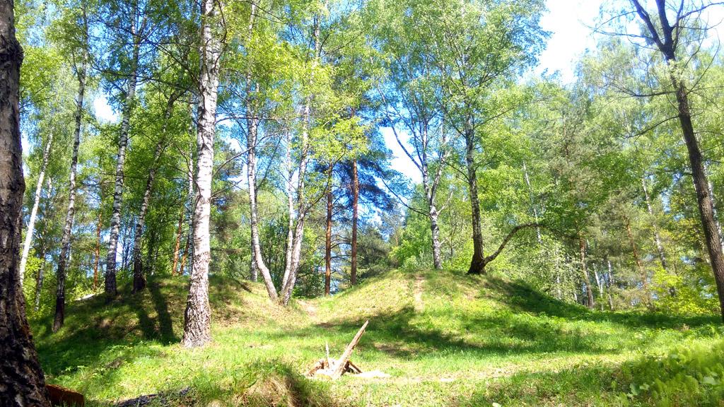 В лесу около Гальчино. Отвалы карьера. Переходим их и спускаемся на дно карьера.