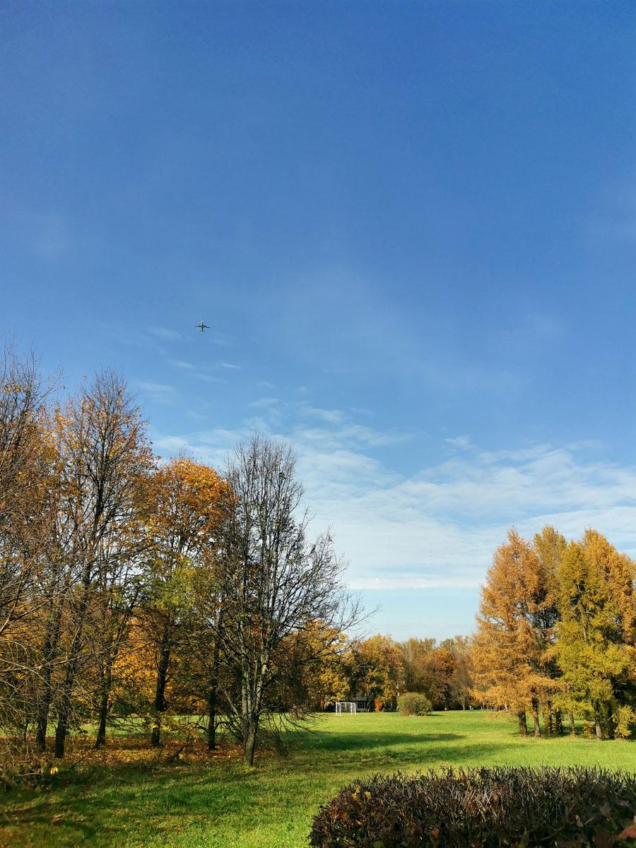 Голубое небо и золотые листья...