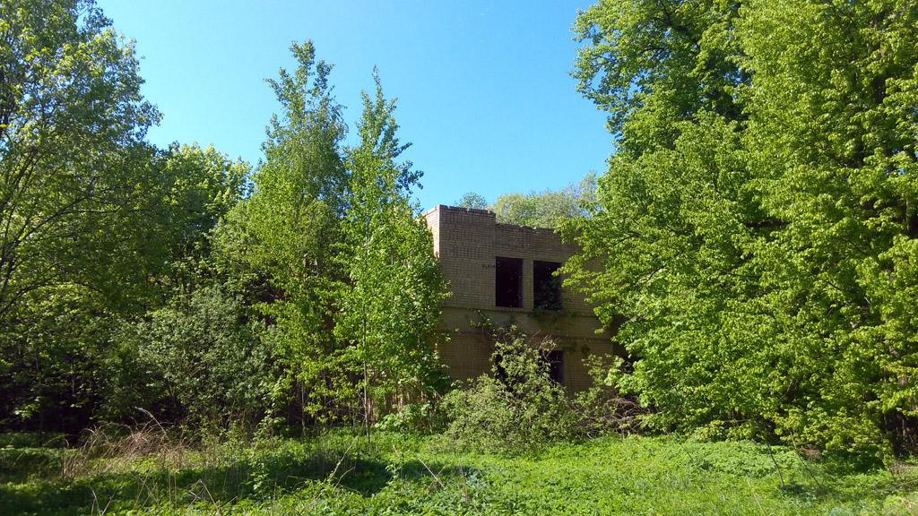 Развалины пионерского лагеря. На стенах помещений целая галерея местных художников.