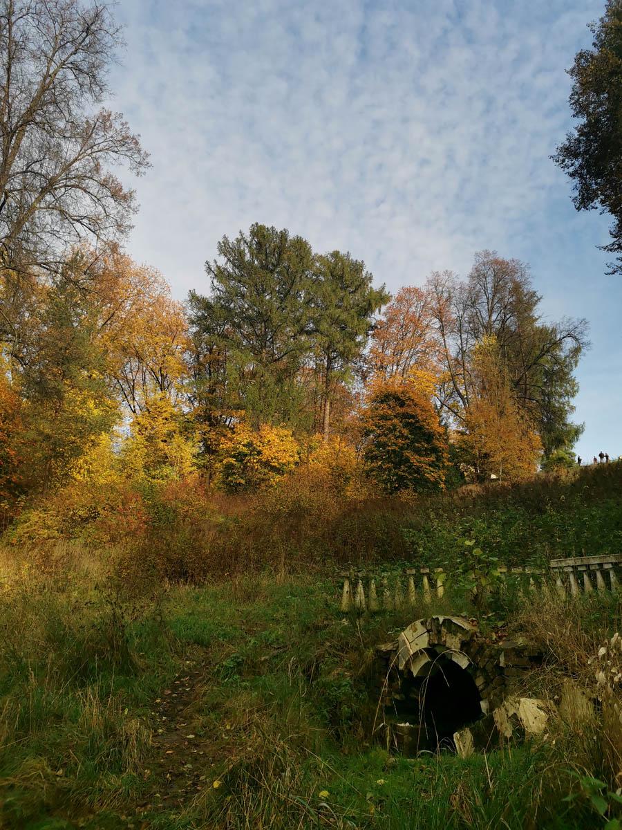 Прекрасная погода и красивейшая природа...