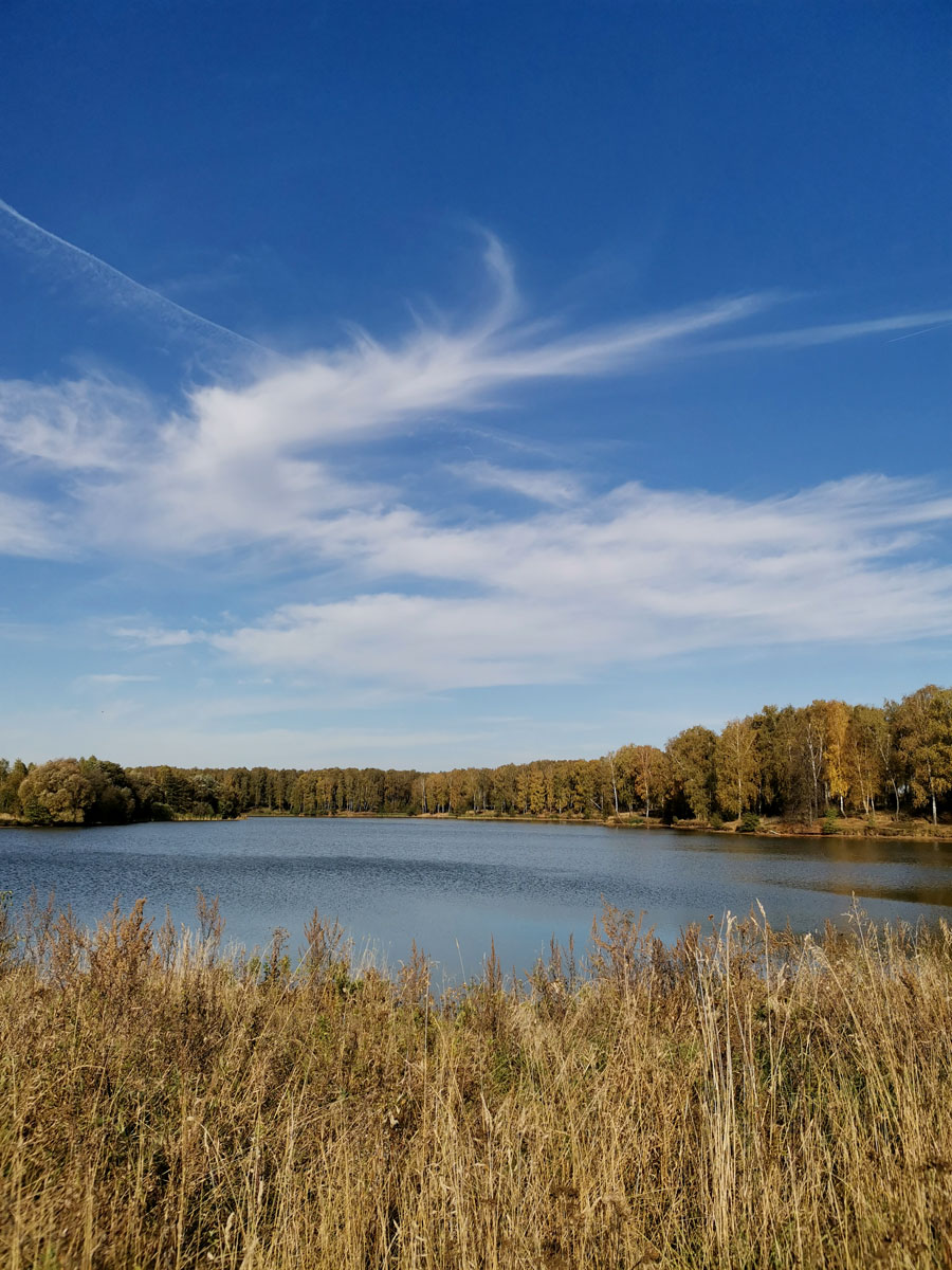 Большой пруд недалеко от села Лобаново.