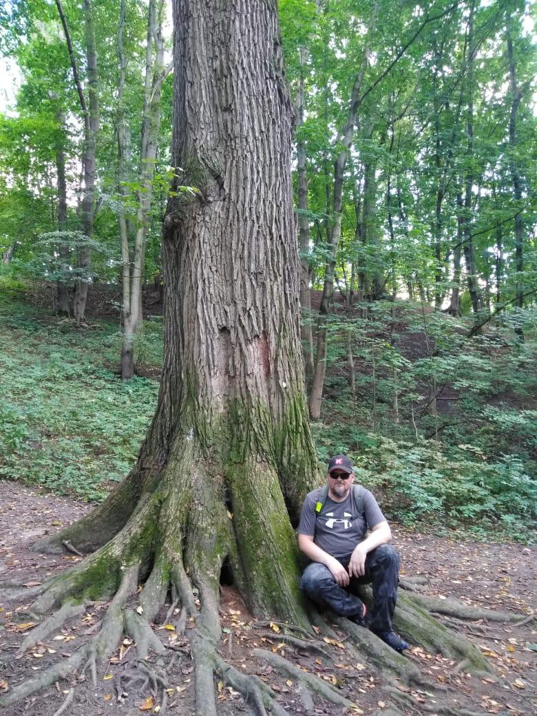 Еще одно дерево (слева)