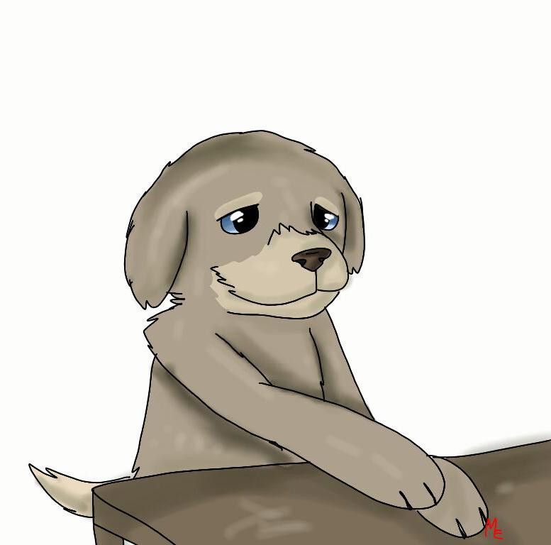 Но одному щенку было грустно... Даже на портрете, который нарисовала моя младшая дочка, это заметно...