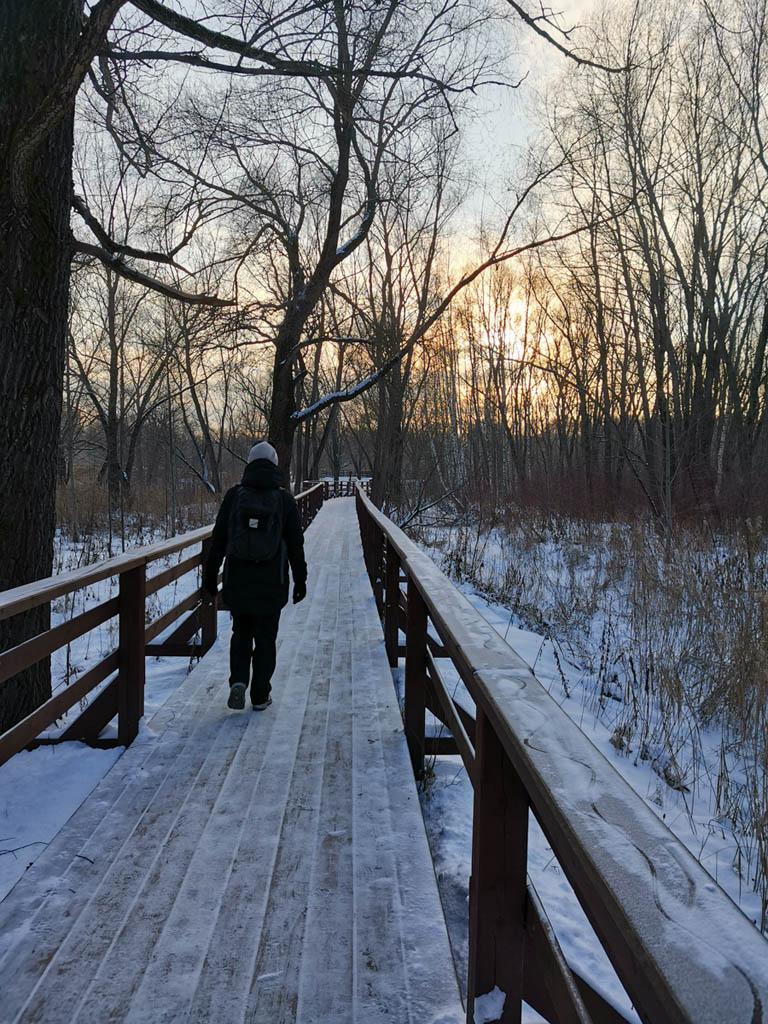 Деревянные мостки с перилами по обе стороны по маршруту экологической тропы.