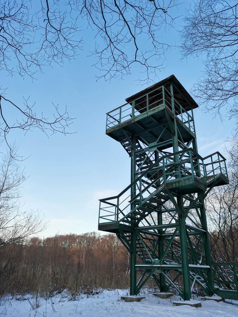 Металлическая конструкция с подъемом по лестнице на верхнюю площадку для осмотра живописных окрестностей и наблюдения за дикими животными.
