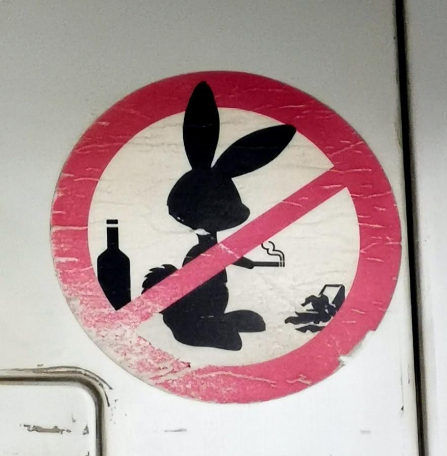 А вот такого зайца встретил в одном из пригородных поездов )))