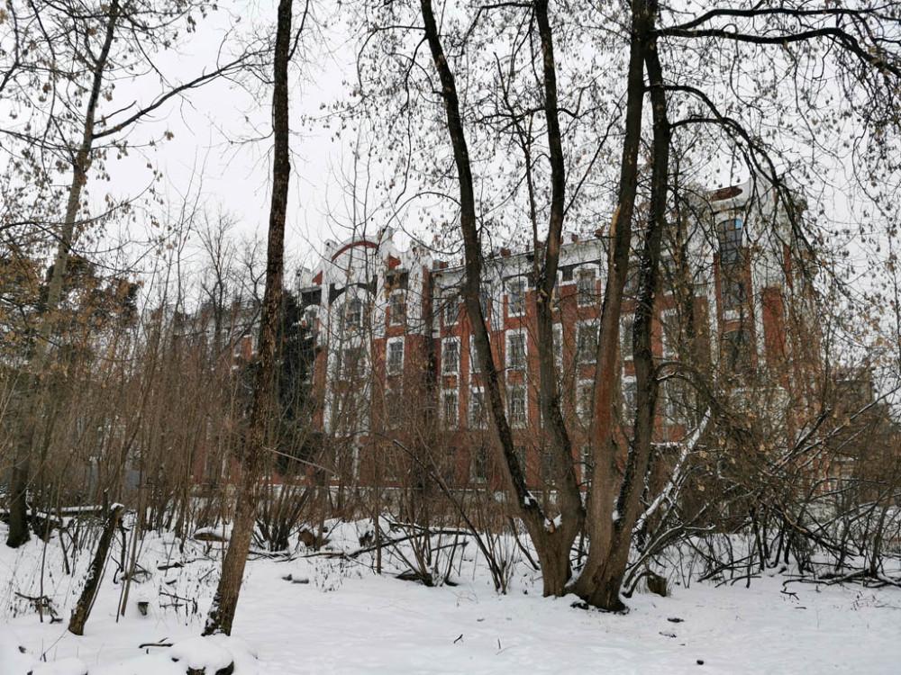 Еще раз оглядываемся на красивые здания. Издали за ветками не видно всей этой разрухи...