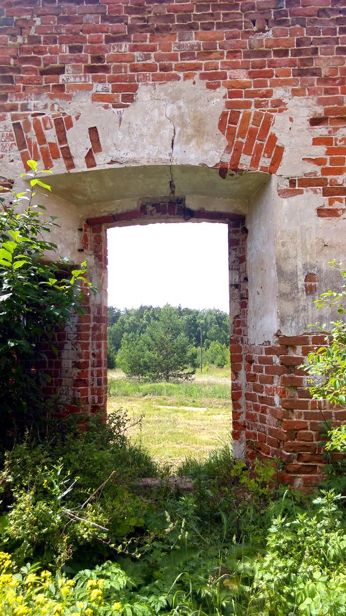 Забираюсь внутрь. Обратите внимание на кустик слева от проема входной двери....