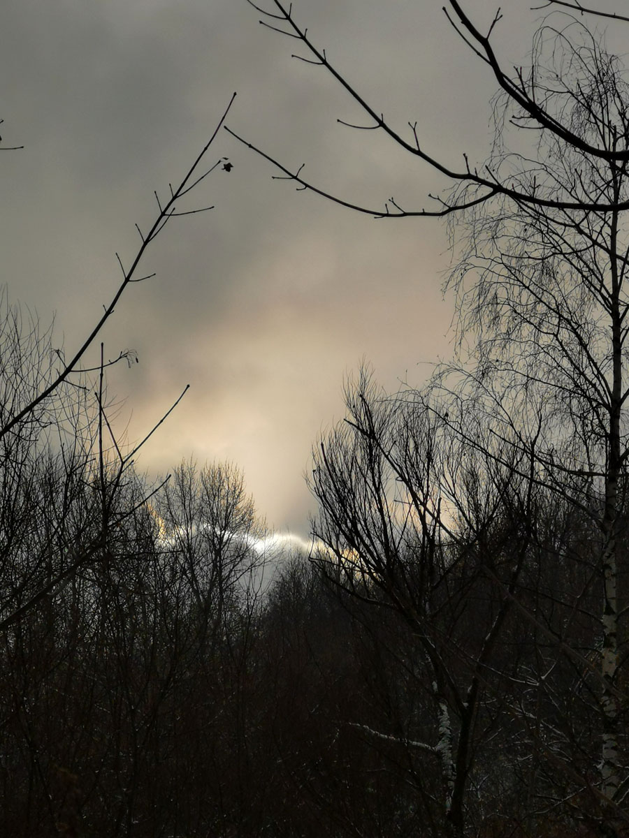 Снова Москва. Небо над Коломенским парком.