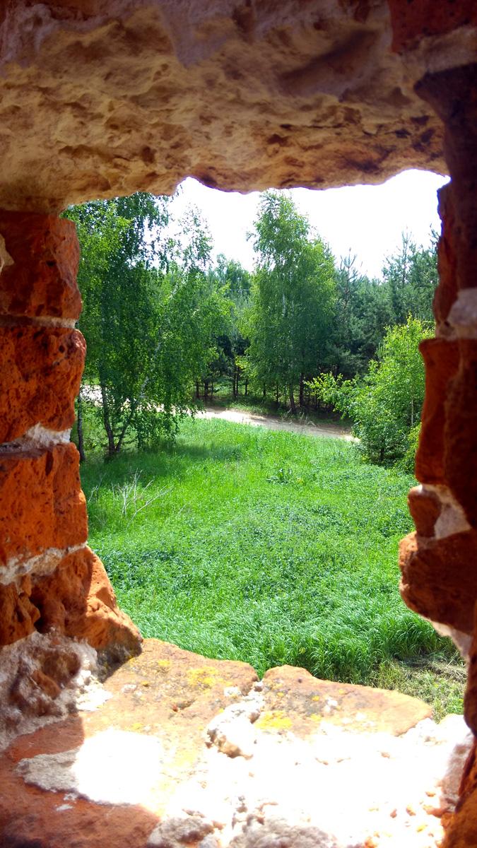Из маленьких окошек виден окружающий село лес.