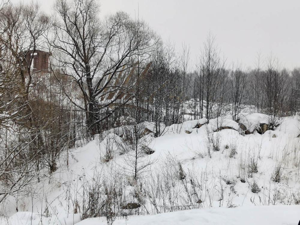 За деревьями ворота выходящие к Рожайке..