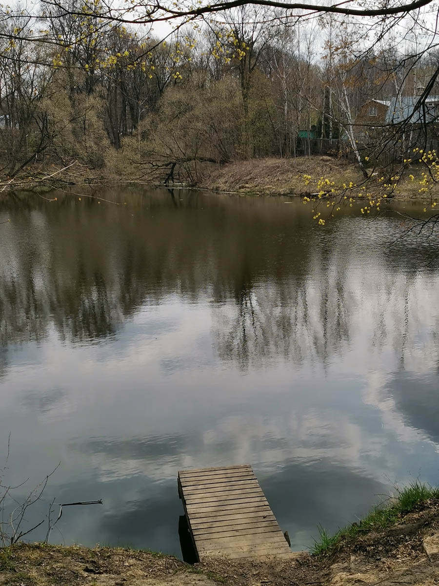А вот, верхний пруд в порядке. Здесь купаются.