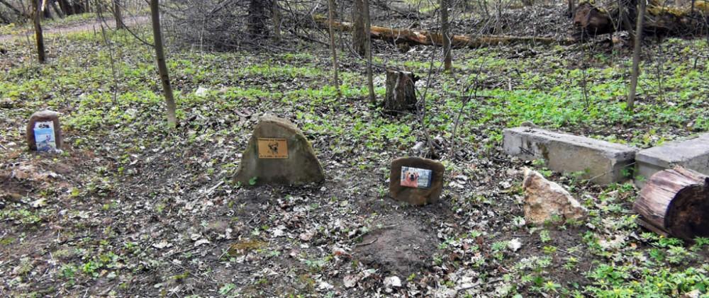 Кладбище домашних животных. Судя по датам, оно здесь минимум лет десять...