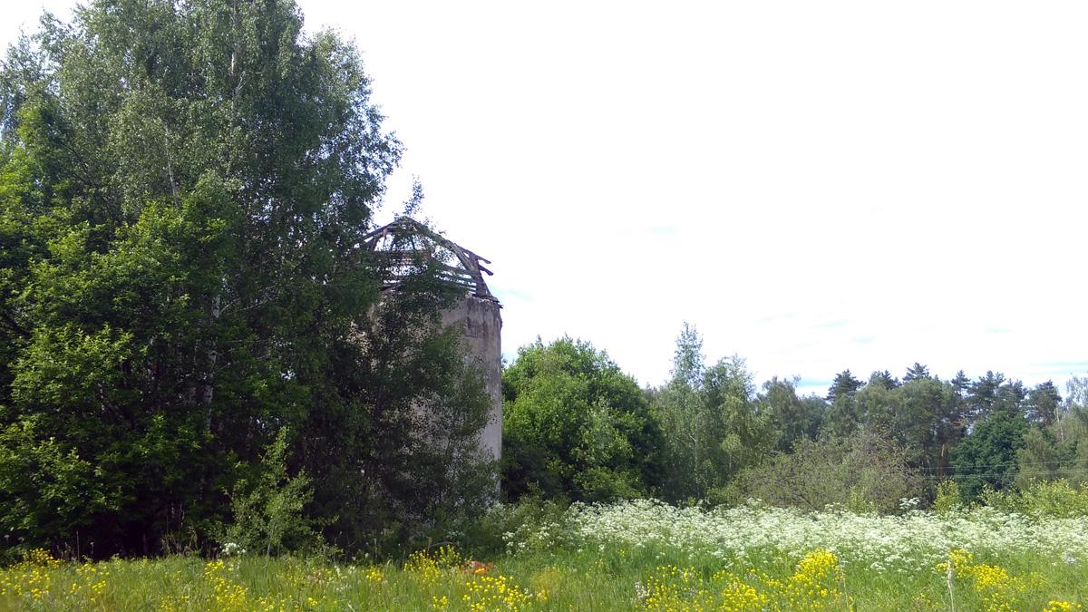 Собрался уходить, но тут увидел очередной сюрприз. За деревьями притаилась башня.