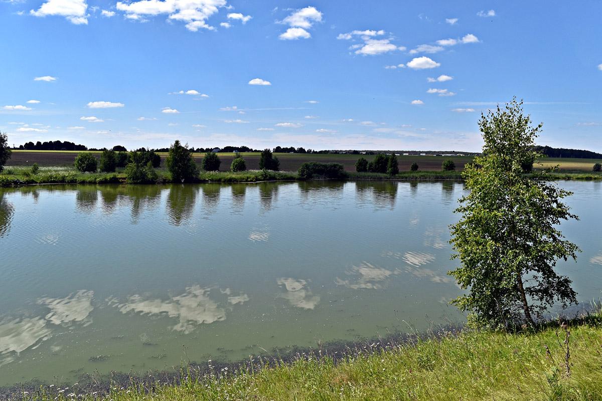 16 июня 2018. Черное Озеро, большой пруд около села Лобаново.