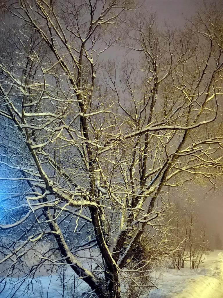 #наулицезима судя по снегопаду, но на самом деле вечер четвертого дня весны.