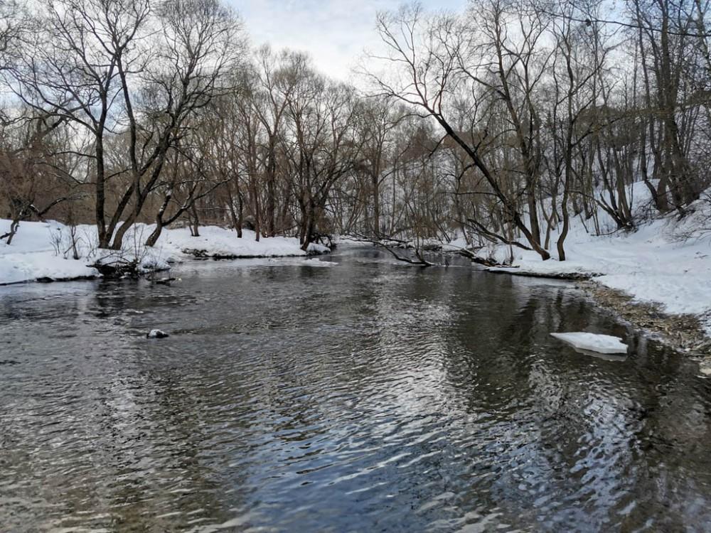 6 марта 2021. Река Рожайка.