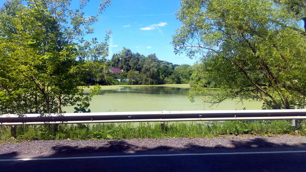 Рядом с храмом пруд. Всего, в селе прудов четыре. И большой пруд под названием Черное Озеро через поле.