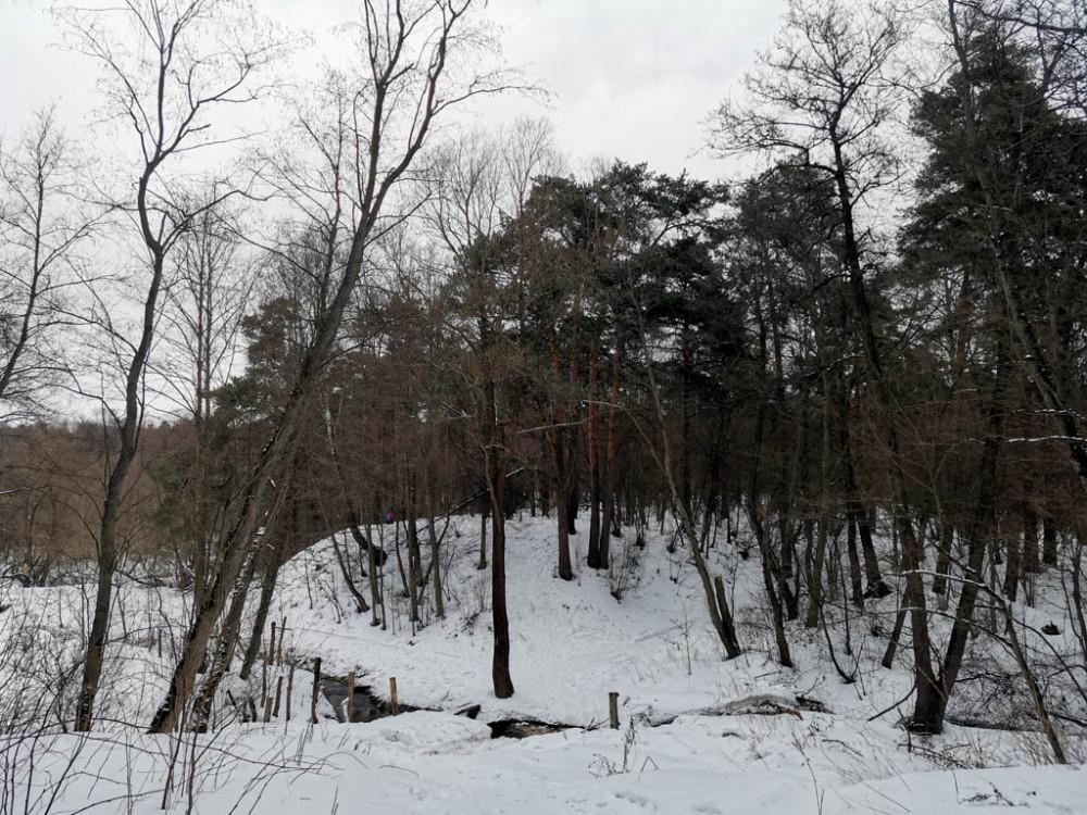 Ручей вдоль которого мы шли от Южного Домодедово до Рожайки.