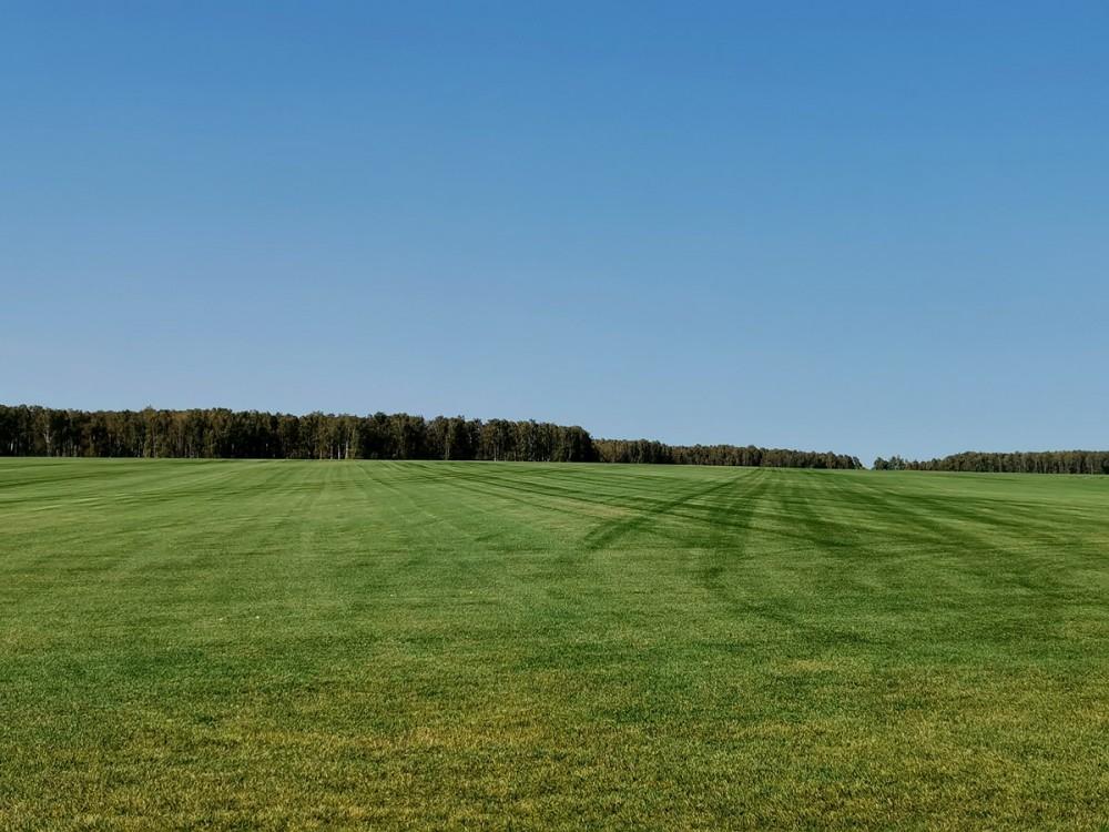 А по краям дороги бескрайние аккуратно постриженные поля...