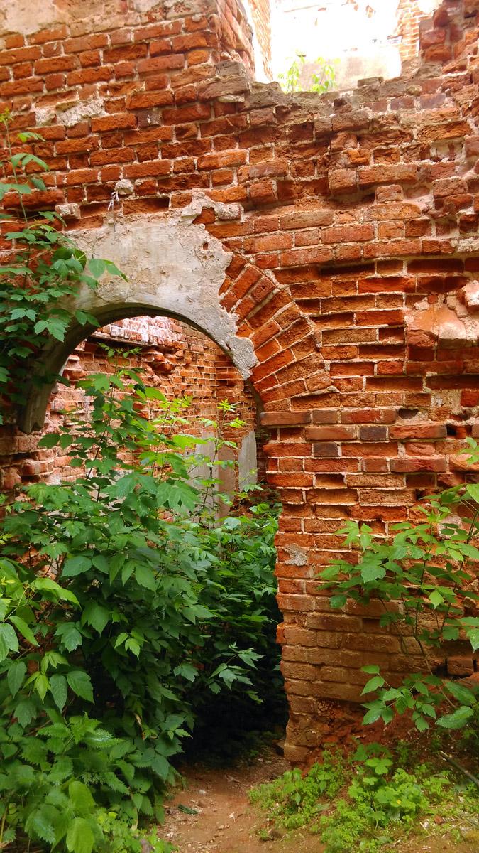 Но все же, будем объективны, немного зелени придают руинам усадьбы более романтичный вид.