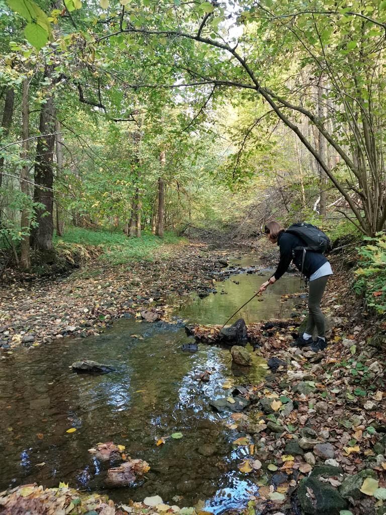 Сброс воды посредством ворошения плотины из листьев )))