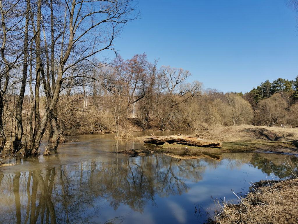 11 апреля 2021г. Река Рожайка.