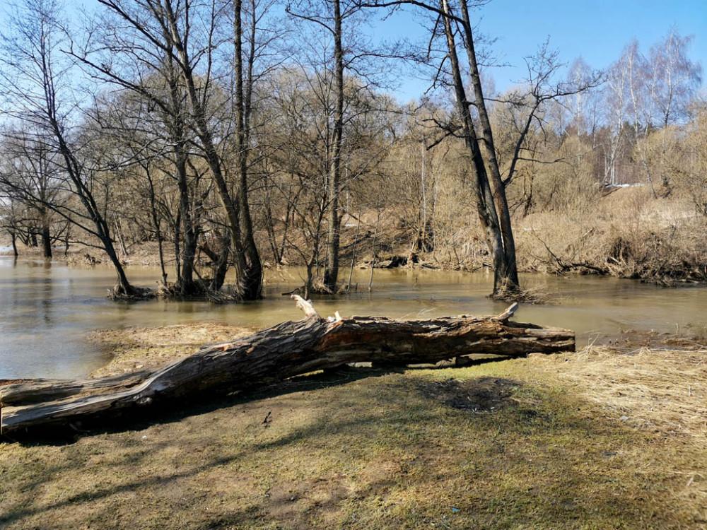 Вышли к реке... Уровень воды заметно выше, чем обычно. Но видно, что самый высокий уровень уже прошел.