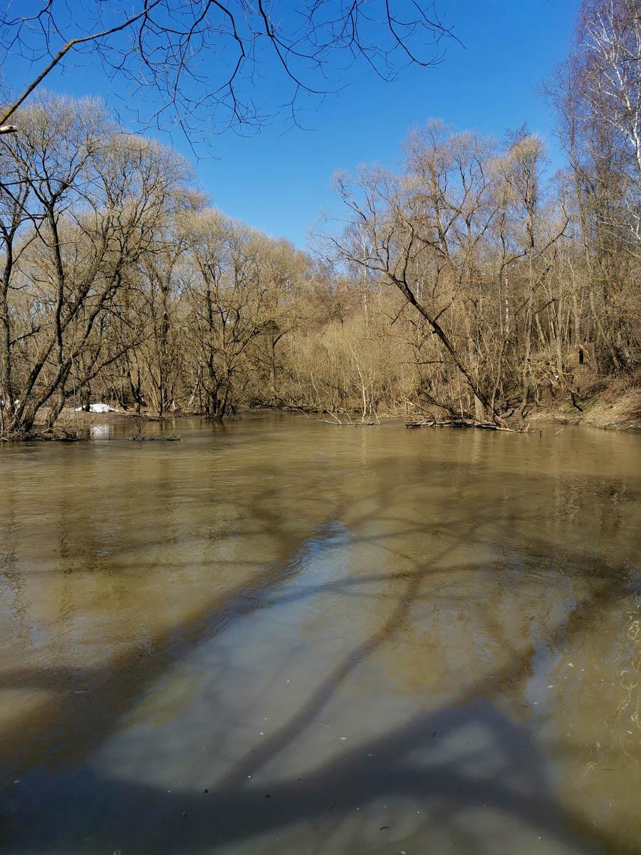 Фоткаем тени от деревьев на воде и поднимаемся по крутому берегу вверх.