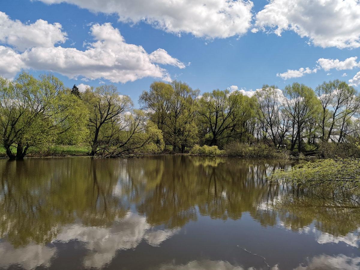 Каскадные пруды усадьбы Кузьминское.