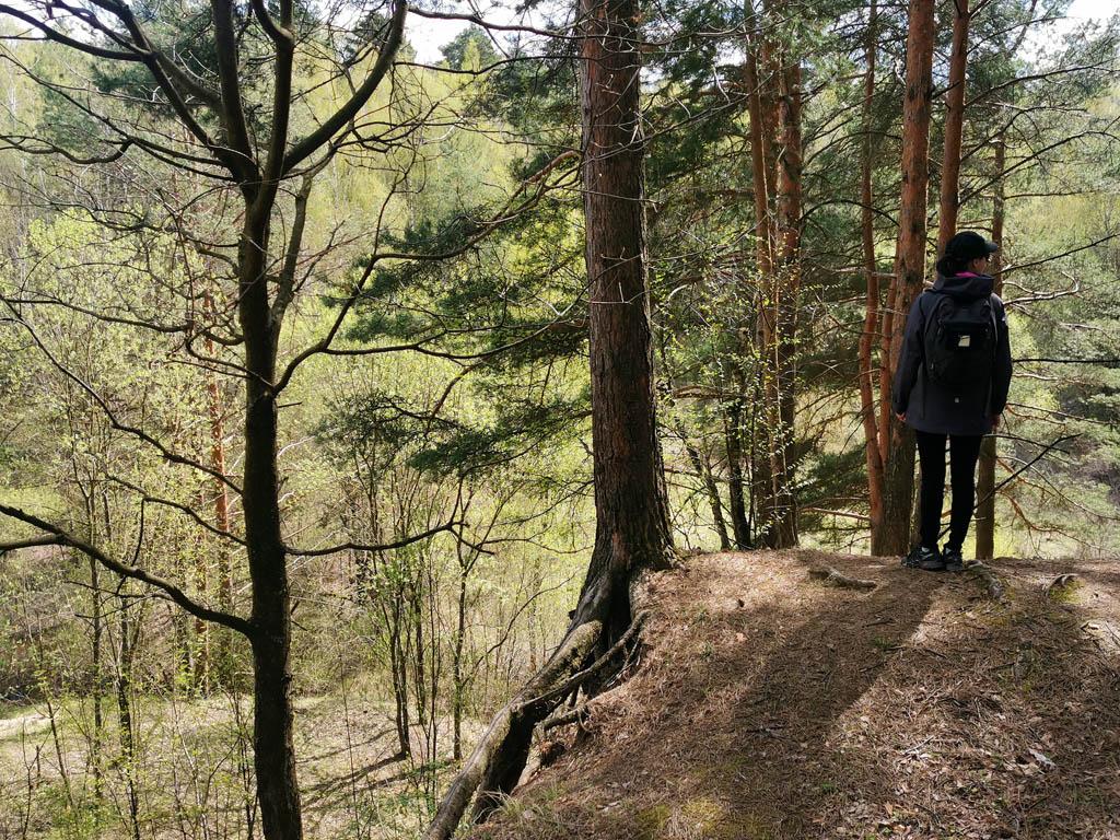 На краю заброшенного карьера в лесу около Гальчино.